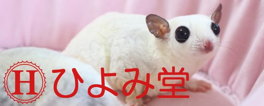 新生ひよみ堂